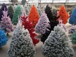 Custom Flocked Christmas Trees