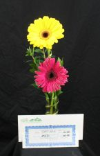 Gerberas and Gift Cards