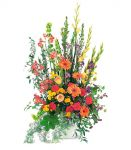 Telefloras Summer Sentiments Arrangement